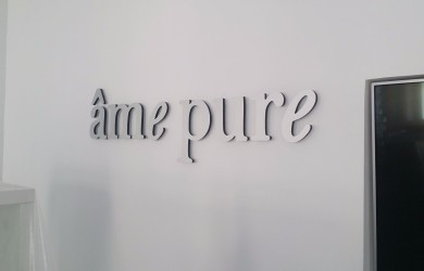 Ame Pure LED logo (5)